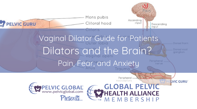 Vaginal Dilator Guide for Patients. Dilators and the Brain? Pain, Fear, and Anxiety