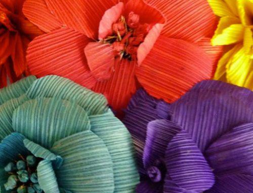 Flower Power for Women's Maternal Health