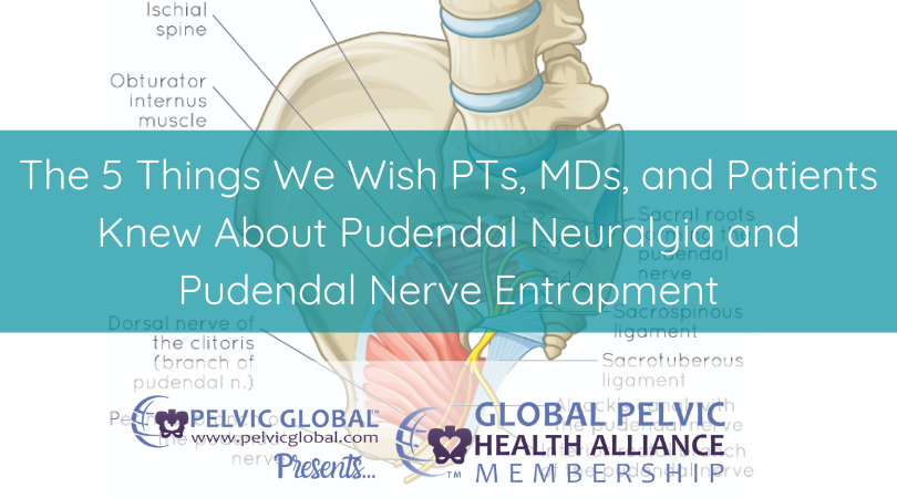 Interview with Tracy Sher about her Pudendal Neuralgia and Complex Pelvic Pain Solutions course. A Pelvic Guru course for pelvic physical therapists and pelvic health providers.