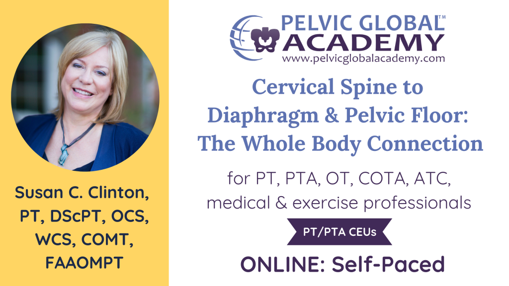 Susan Clinton teaching an amazing course on the relationship between the cervical spine, the diaphragm, and the pelvic floor for pelvic physical therapists and fitness professionals.