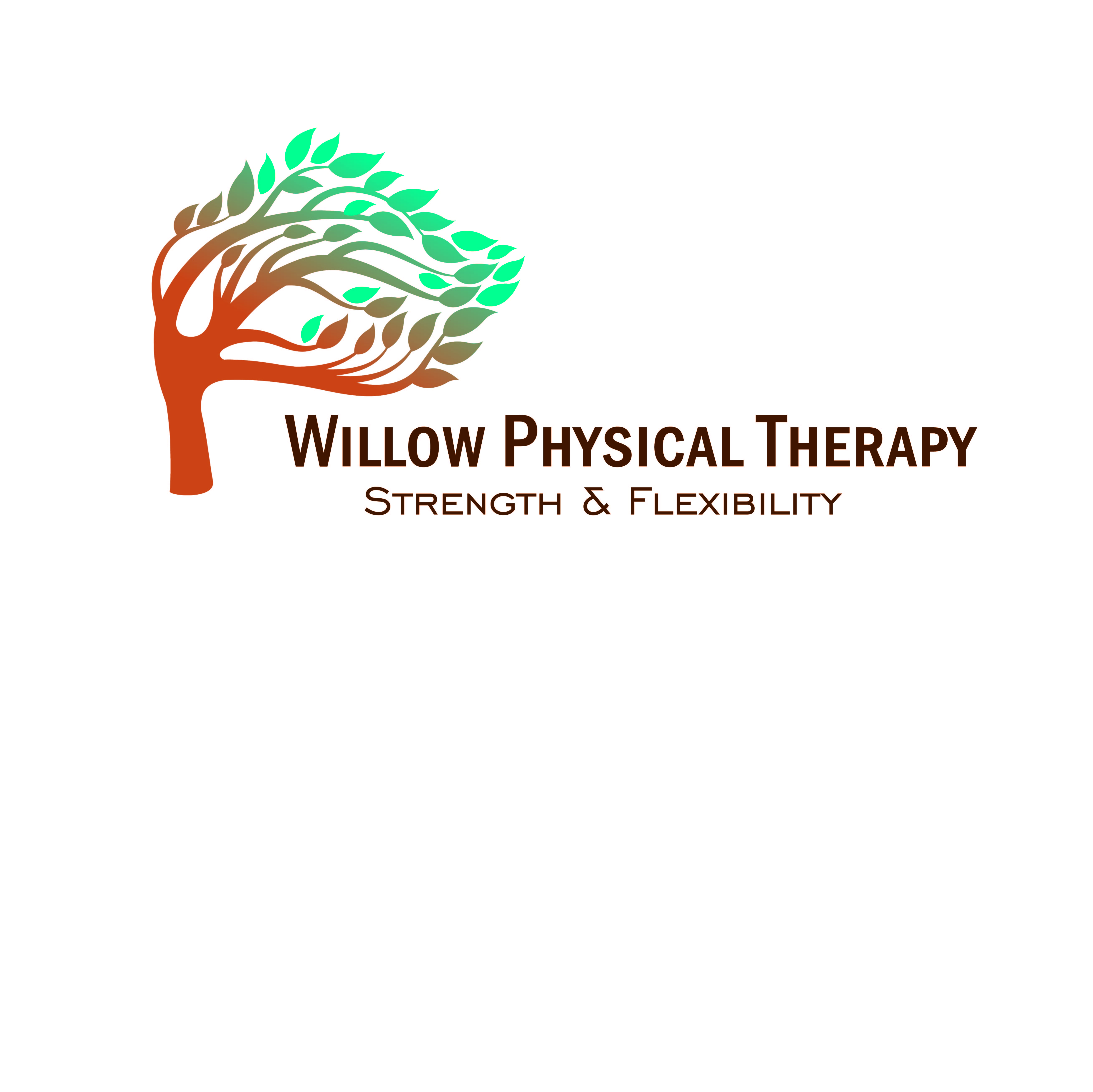 Aisha Wilbur, PT, Willow Physical Therapy